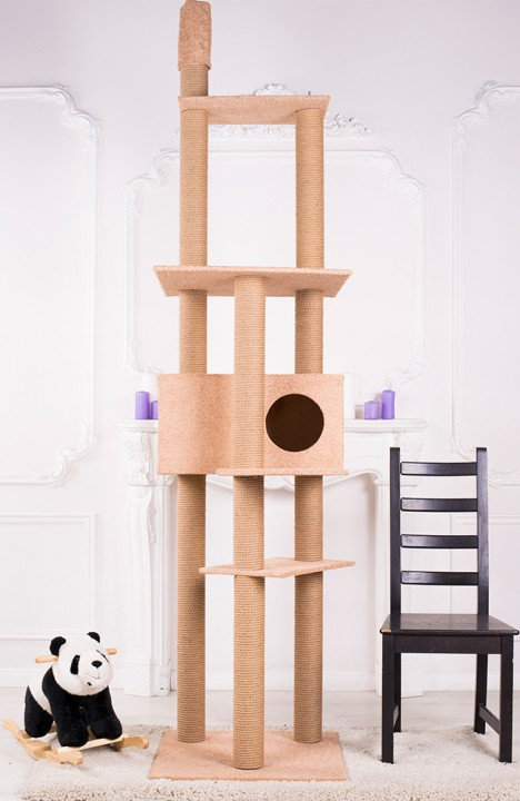 Комплекс для кошки Мейн-кун-11С
