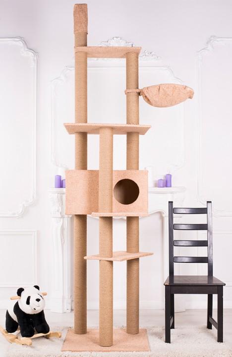 Комплекс для кошки Мейн-кун-2С