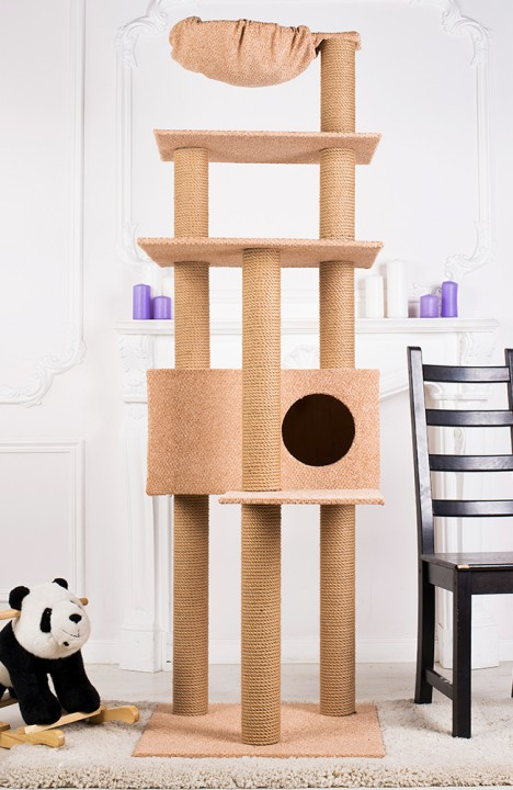 Домик для кошки Мейн-кун-8С