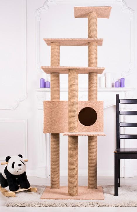 Домик для кошки Мейн-кун-9С