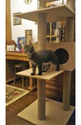 Домик для кошки Мейн-кун-6С
