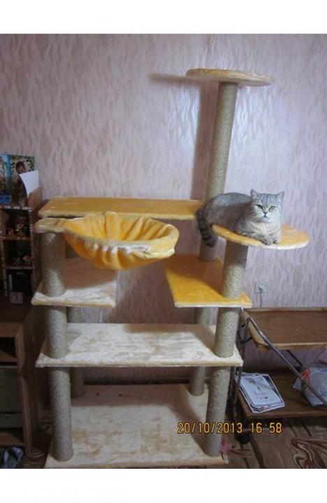 Домик для кошки Домашний-1С